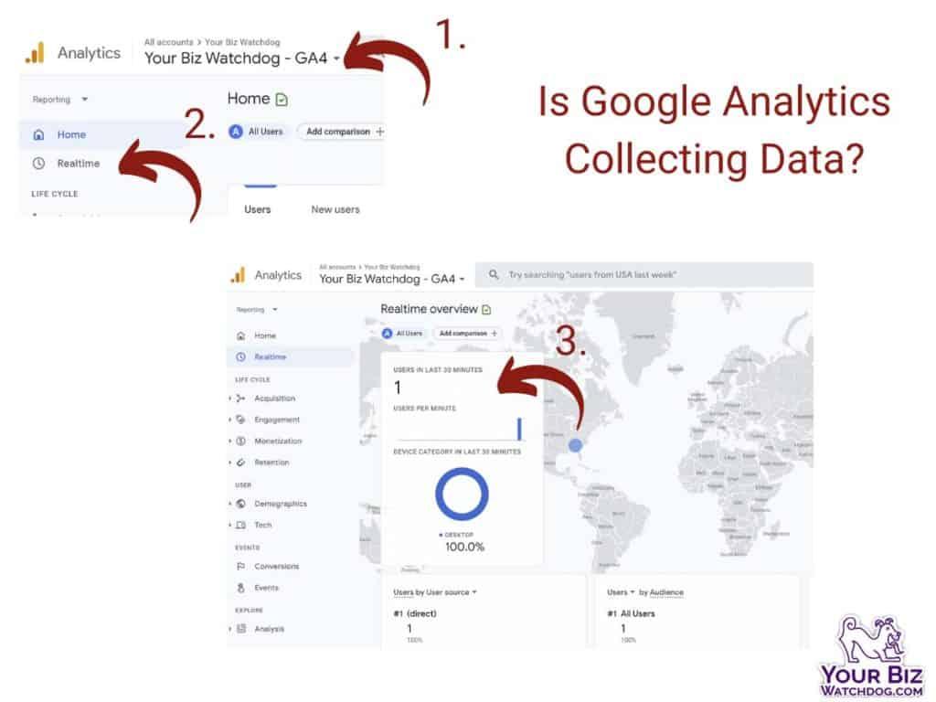 Is google analytics collecting data screenshot